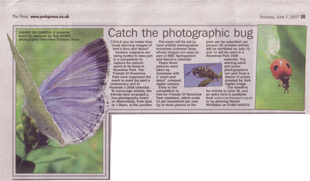 My photos in The Press article, 7 June 2007