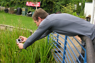Henry's Dad photographing a dragonfly