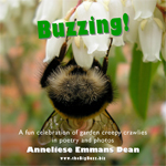 Buzzing!CD
