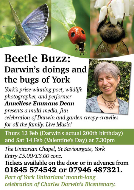 Our Beetle Buzz show will tell you everything you always wanted to know about Darwin