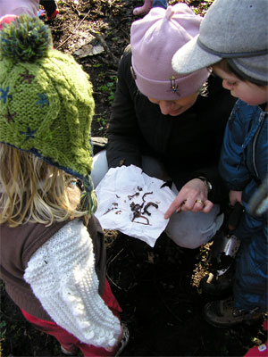 Looking at the different worms we'd dug up