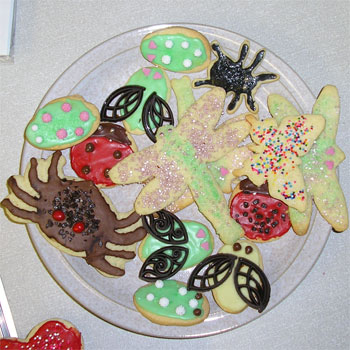 Marta's fantastic insect cookies