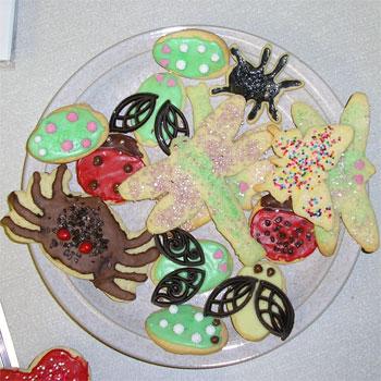 Marta's fantastic insect cookies