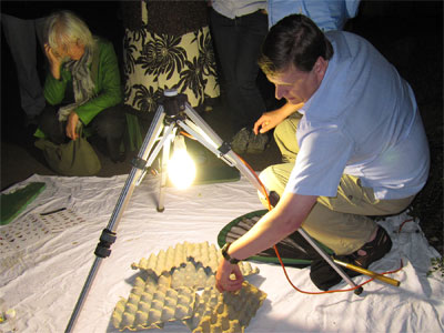 Moth Trapping at York Cemetery with Dr Dave Chesmore, 24 June 2009