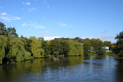 University of York campus (Photo: Anneliese Emmans Dean)