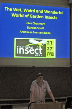 National Insect Week 2010 at the University of York