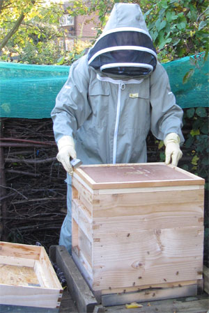 Katy opening up her bee hive