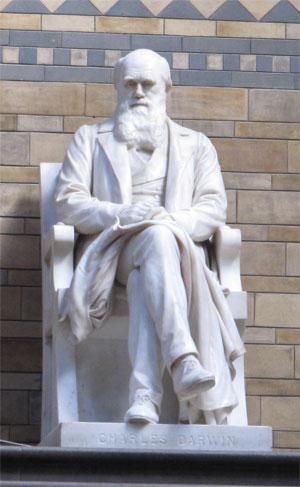 Darwin at the NHM in London