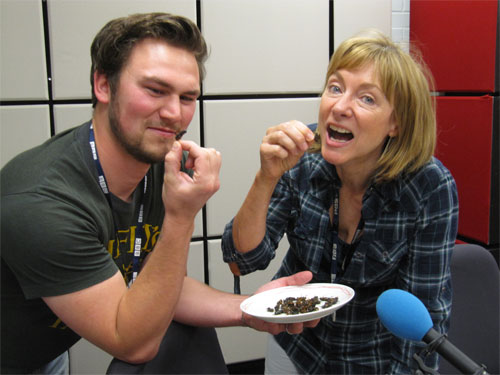 BBC Radio York presenter Julia Booth with assistant Jack eating crickets in cajun sauce!