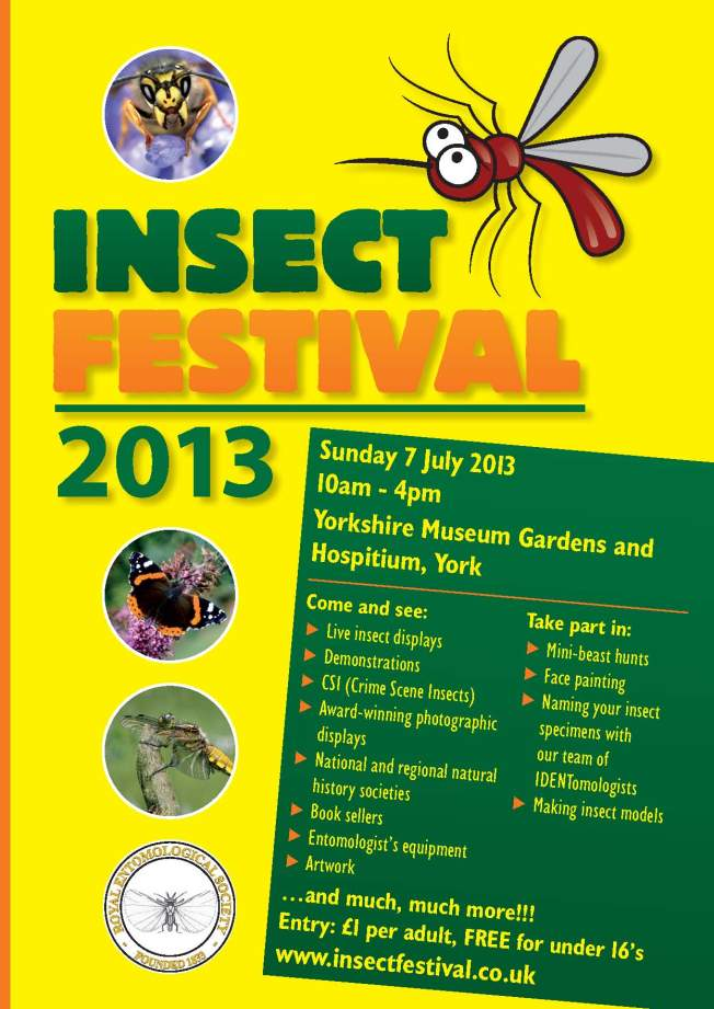 Insect Festival 2013 Poster_web
