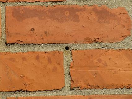 14-3.5.14-Mason-bee-hole-5202-w