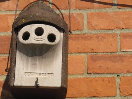 14-3.5.14--nest-box-and-hole-cr_