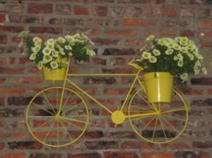 Yellow bike in York