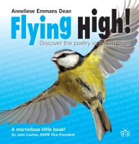 Cover of Flying High! by Anneliese Emmans Dean