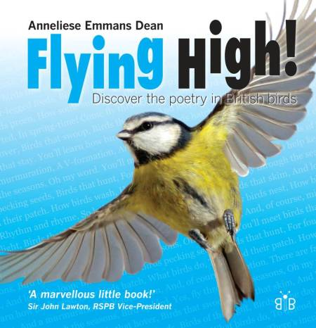 My Flying High! book