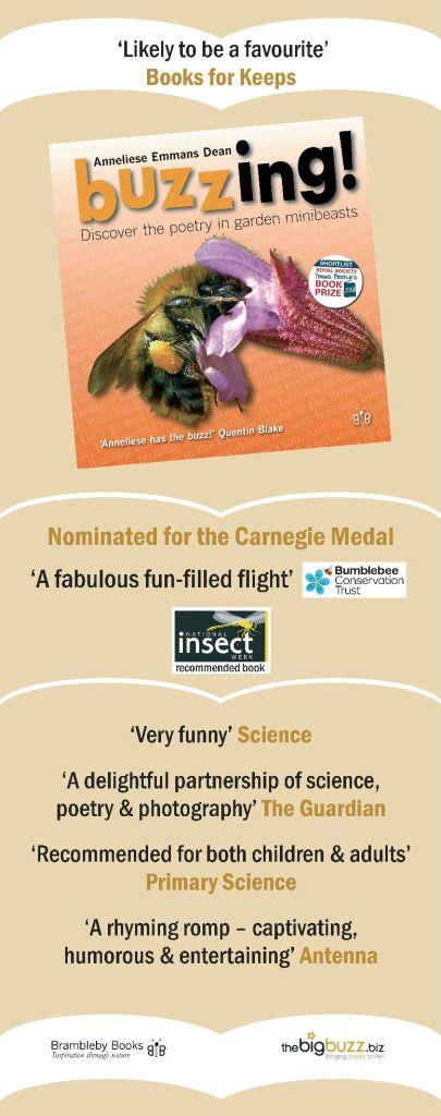 buzzing-banner-sm-8-15