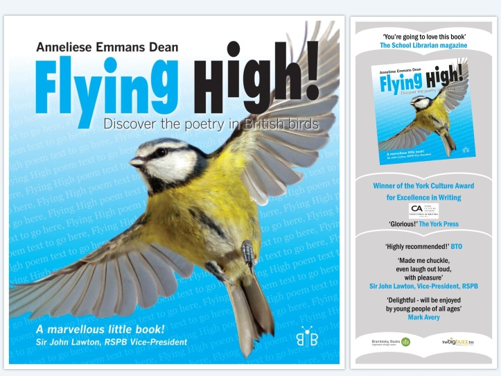 Cover of my Flying High! book